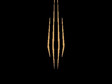 Territorio Luthier – Ribera del Duero
